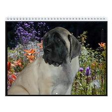Mastiff Puppy Wall Calendar