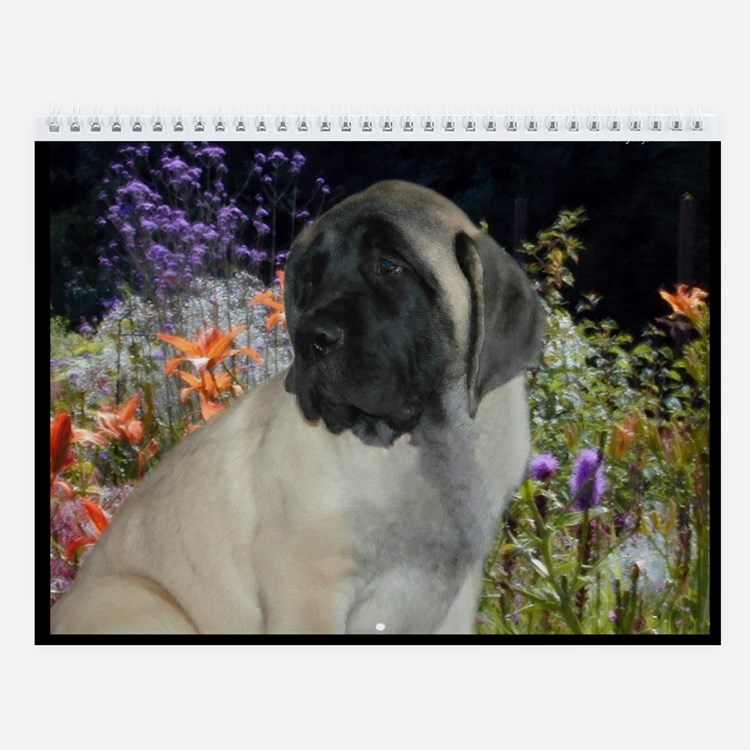 Mastiff Puppy Wall Calendar