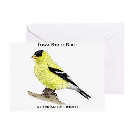 Iowa State Bird Greeting Cards (Pk of 10)