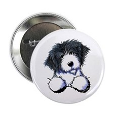 """Pocket Bearded Collie 2.25"""" Button"""