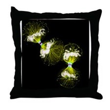 Cell division - Throw Pillow