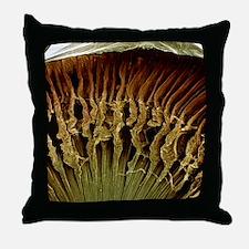 Ciliary body, SEM - Throw Pillow