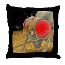 Fruit fly, SEM - Throw Pillow