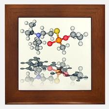 VX nerve agent molecule - Framed Tile