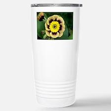 Alpine auricula 'Sirius' flower - Travel Mug