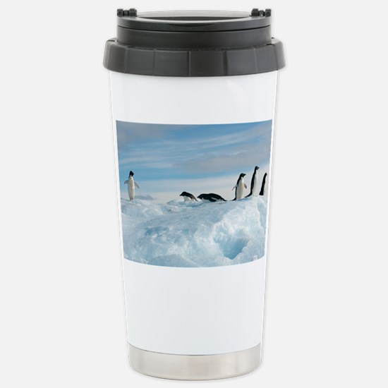 Adelie penguins - Stainless Steel Travel Mug