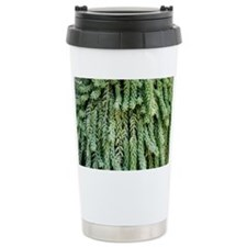 Burro's tail foliage - Travel Mug
