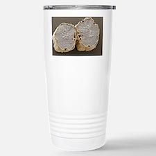 Caraway fruit, SEM - Travel Mug