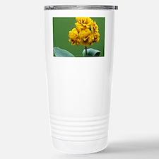 Double auricula 'Golden Hind' flowers - Travel Mug