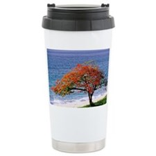 Flamboyant tree - Travel Mug