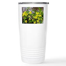 False Senna (Coronilla emerus) - Travel Mug