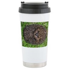 European hedgehog - Travel Coffee Mug