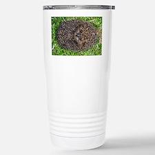 European hedgehog - Travel Mug