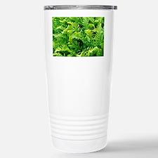 Fern leaves - Travel Mug