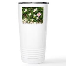 Helianthemum flowers - Travel Mug