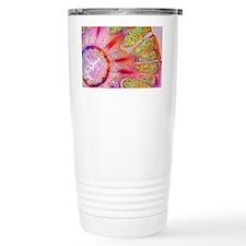 Horsetail cone, light micrograph - Travel Mug