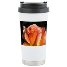 Hybrid tea rose (Rosa 'Can-Can') - Travel Mug