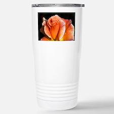 Hybrid tea rose (Rosa 'Can-Can') - Travel Mug