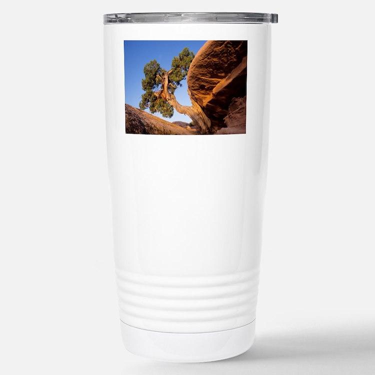 Juniper tree - Travel Mug