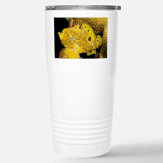 Longlure frogfish - Stainless Steel Travel Mug