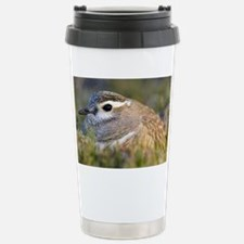 Male dotterel sitting on a nest - Stainless Steel