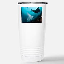 Manta rays - Stainless Steel Travel Mug