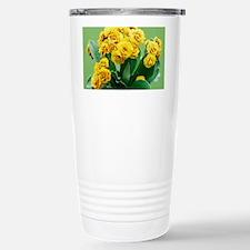 Primula auricula 'Golden Hind' - Travel Mug