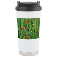 Poppy (Papaver sp.) flowers - Travel Mug
