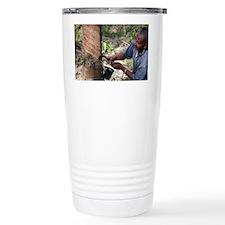 Rubber trees (Hevea brasiliensis) - Travel Mug