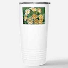 Show auricula 'Lord Saye en Sele' flowers - Cerami