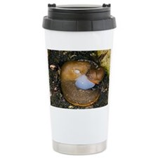 Slugs mating - Travel Mug