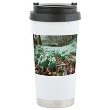 Snowdrops (Galanthus nivalis) - Travel Mug