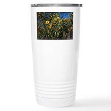 Sticky Cassia (Senna glutinosa) - Travel Mug