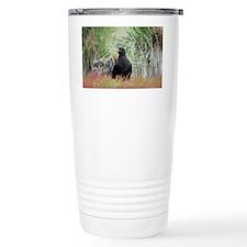 Striated caracara - Travel Mug