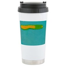 Vibrio cholerae bacterium - Travel Mug