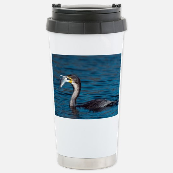 White-breasted cormorant with fish - Stainless Ste
