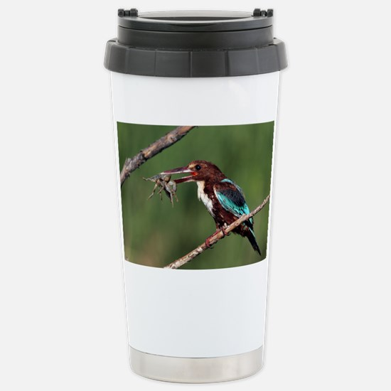 White-throated kingfisher - Stainless Steel Travel