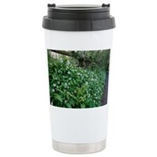 Wild garlic in woodland - Travel Mug
