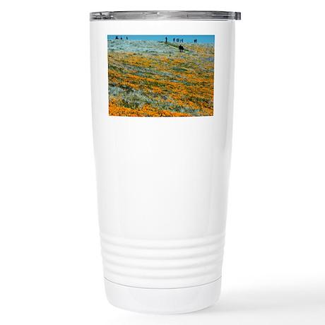 Antelope Valley California Poppy Reserve - Stainle