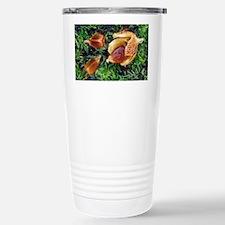 Beech nuts - Travel Mug