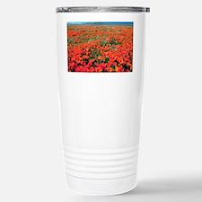 Californian Poppies (Eschscholzia) - Stainless Ste