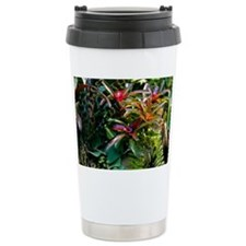 Bromeliad plant - Travel Mug