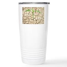 Cracked mud and seedling - Travel Mug