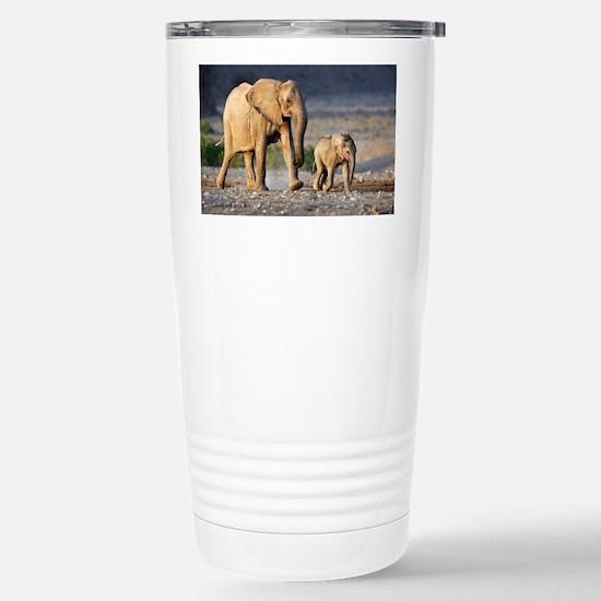 Desert-adapted elephants - Stainless Steel Travel