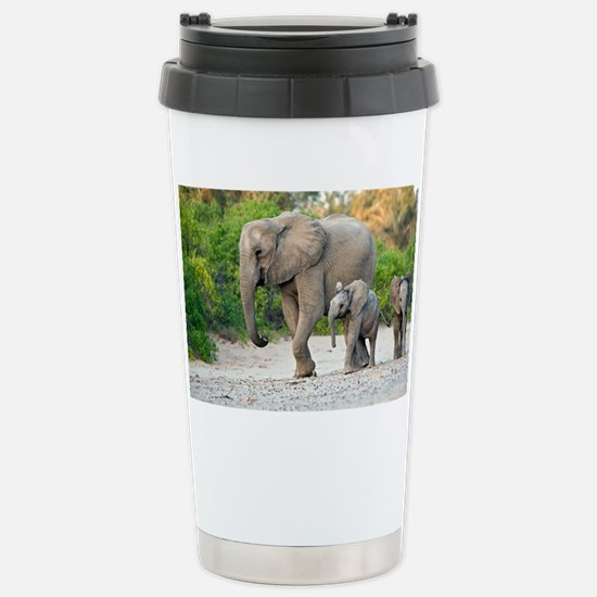 Desert-adapted elephants - Stainless Steel Travel