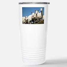 Herd of goats - Travel Mug