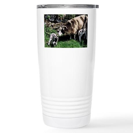 Jacob sheep - Stainless Steel Travel Mug