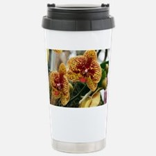 Orchid flowers - Stainless Steel Travel Mug