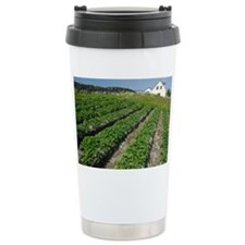 Potatoes growing in lazy beds - Travel Mug