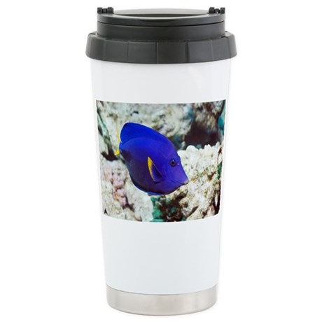 Powder-blue tang - Stainless Steel Travel Mug by sciencephotos